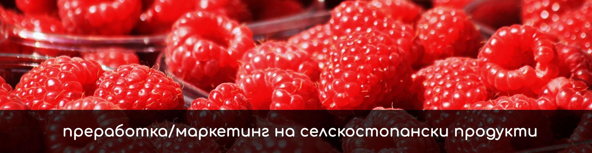 ПРЕРАБОТКА/МАРКЕТИНГ НА СЕЛСКОСТОПАНСКИ ПРОДУКТИ